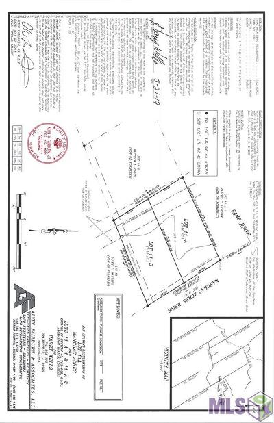 Rural Tract (No Subd) Residential Lots & Land For Sale: 18593 Manchac Acres Rd #11-B