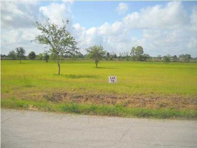 Vermilion Parish Residential Lots & Land For Sale: Hwy 167