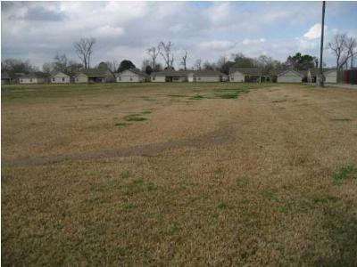 Commercial Lots & Land For Sale: Mills Street