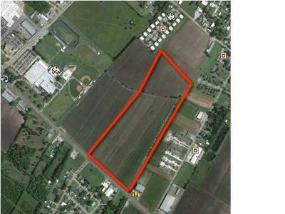 Iberia Parish Farm For Sale: 00 E Admiral Doyle Drive