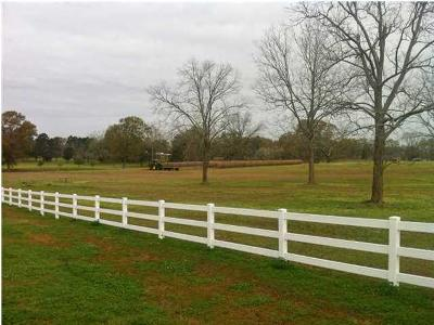 Carencro LA Residential Lots & Land For Sale: $218,925
