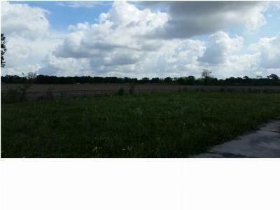 New Iberia Residential Lots & Land For Sale: 6304 Hwy 90