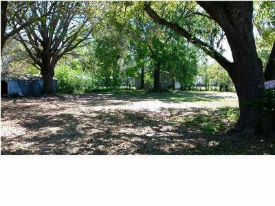 Evangeline Parish Residential Lots & Land For Sale: 102 Ash
