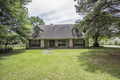 Single Family Home For Sale: 140 Smith Reed Road