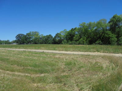 St Landry Parish Residential Lots & Land For Sale: #2 Commerce Boulevard
