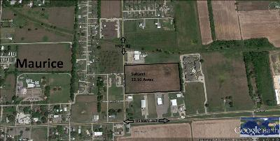 Vermilion Parish Farm For Sale: 200 Blk Us Hwy 92