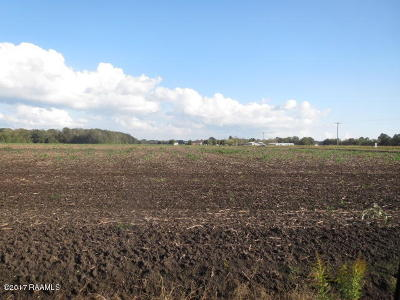 St Martin Parish Residential Lots & Land For Sale: 13-B Camp Bon Temps Road