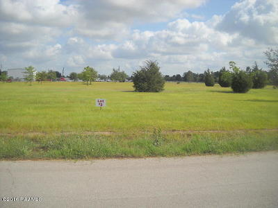 St Martinville, Breaux Bridge, Abbeville Residential Lots & Land For Sale: Hwy 167 E Hwy 167