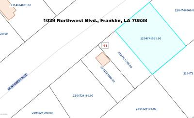 St Mary Parish Commercial Lots & Land For Sale: 1029 Northwest Blvd.