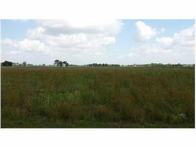 Vermilion Parish Farm For Sale: La Hwy 338