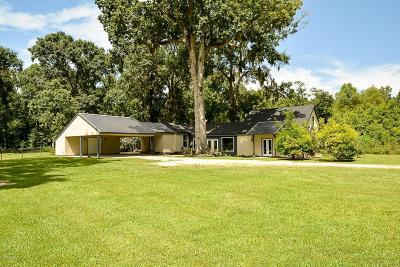 St Martinville, Breaux Bridge, Abbeville Single Family Home For Sale: 1902 Alcide Circle