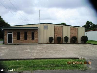 Iberia Parish Commercial For Sale: 414 W Admiral Doyle Drive