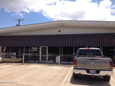 Iberia Parish Commercial For Sale: 708 W Admiral Doyle Drive