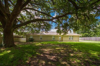 Arnaudville Single Family Home For Sale: 1020 Hilda Calais