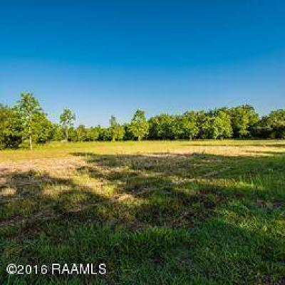 St Martin Parish Farm For Sale: Tbd Cypress Island Hwy