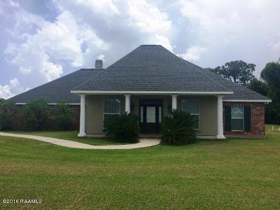 Opelousas Single Family Home Active/Contingent: 383 Shawnee Farms Road