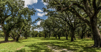 St Mary Parish Residential Lots & Land For Sale: 19164 W Hwy 182