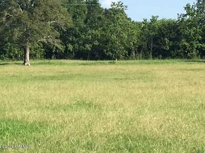 Jefferson Davis Parish Residential Lots & Land For Sale: 1200 Roberts Ave (Evangeline Hwy)