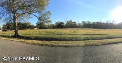 Vermilion Parish Residential Lots & Land For Sale: 413 Evelyn Drive