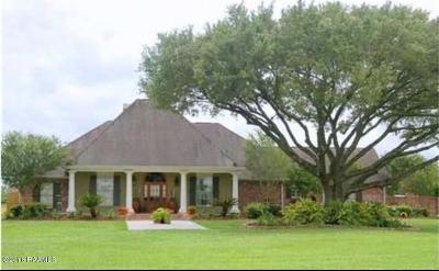 Lafayette Parish Single Family Home For Sale: 1318 E Butcher Switch