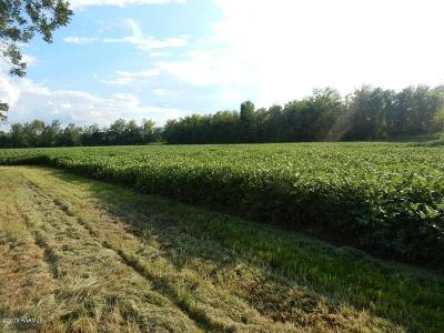 St Landry Parish Farm For Sale: 1047 La Hwy 343