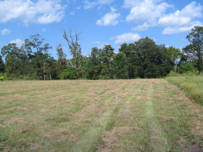 Commercial Lots & Land For Sale: Tbd Main Hwy