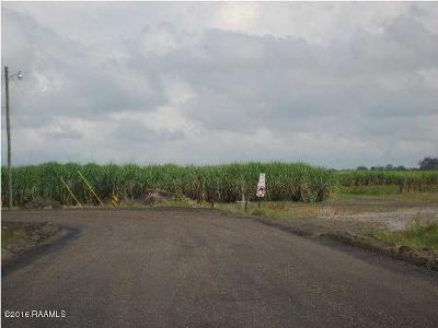 Farm For Sale: La Hwy 347