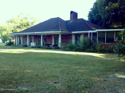 Mamou Single Family Home For Sale: 908 Main Street