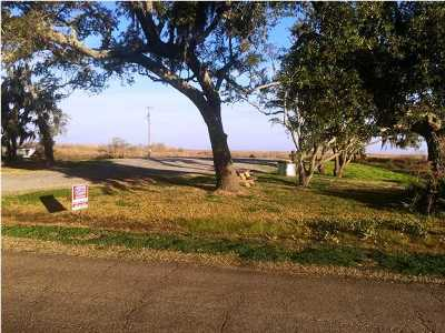 St Mary Parish Residential Lots & Land For Sale: 3240 Hwy 319
