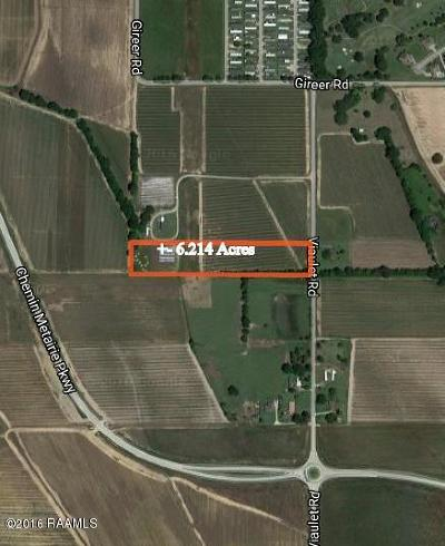 Commercial Lots & Land For Sale: 240 Viaulet Road