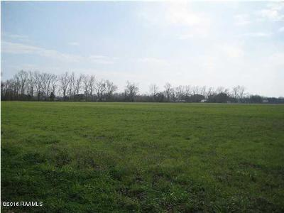 Leonville Residential Lots & Land For Sale: Lot 3 La Hwy 31