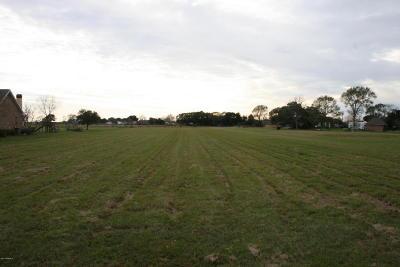 Vermilion Parish Residential Lots & Land For Sale: 13722 Pumping Plant Rd