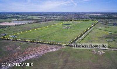 St Landry Parish Farm For Sale: 399 Half Way House Road
