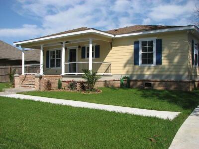 Carencro Single Family Home For Sale: 131 Tee Ma Road