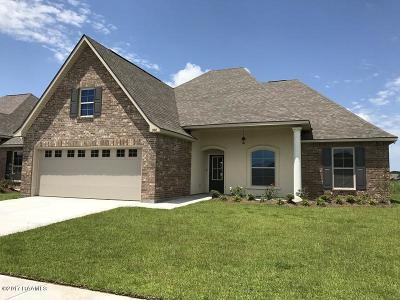 Meadows Bend Lakes Single Family Home For Sale: 308 Claystone Road