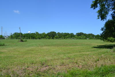 New Iberia Residential Lots & Land For Sale: Perry