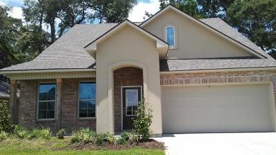 Lafayette Single Family Home For Sale: 201 Starlight Drive