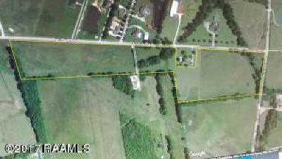 Vermilion Parish Farm For Sale: 001 Baudoin Road