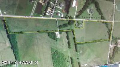 Vermilion Parish Farm For Sale: 001 Kirk Road
