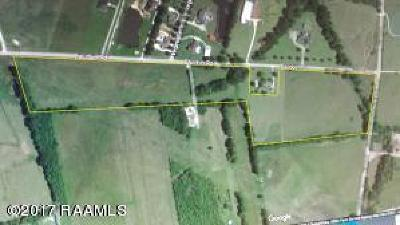 Vermilion Parish Farm For Sale: 00 Kirk Road