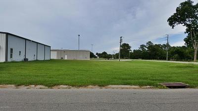 Commercial Lots & Land For Sale: 00 Commercial Park Drive