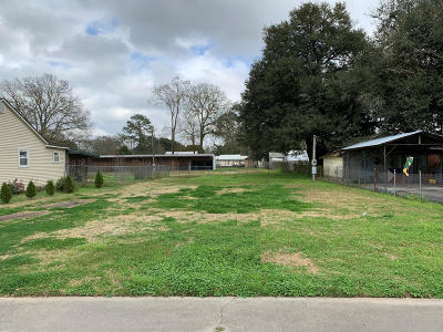 Commercial Lots & Land For Sale: 503 S Morgan Street