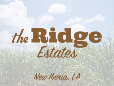 Iberia Parish Residential Lots & Land For Sale: Fremin Road