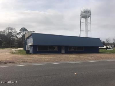 Jefferson Davis Parish Commercial For Sale: 523 Arthur Avenue