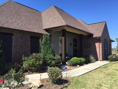 St Martinville, Breaux Bridge, Abbeville Single Family Home For Sale: 9728 Romulus Road