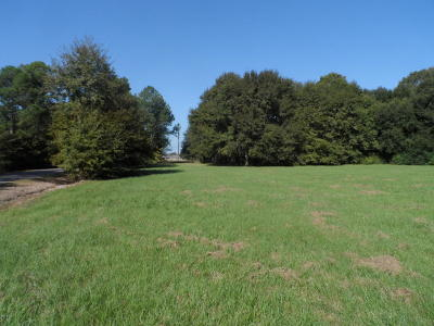Evangeline Parish Commercial Lots & Land For Sale: Tate Cove Rd/2.24acs