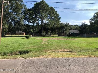 Duson Single Family Home For Sale: 335 Toby Mouton Rd