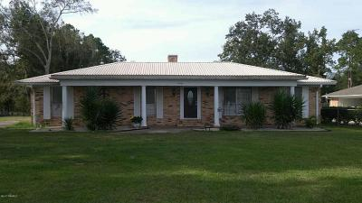 Franklin Single Family Home For Sale: 4460 Irish Bend Rd