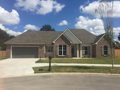 Carencro Single Family Home For Sale: 105 Buttonwood Drive