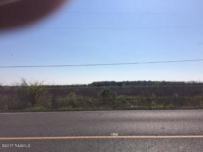 St Mary Parish Residential Lots & Land For Sale: 479 Hwy 317